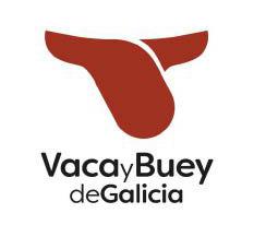 vaca-buey-galicia