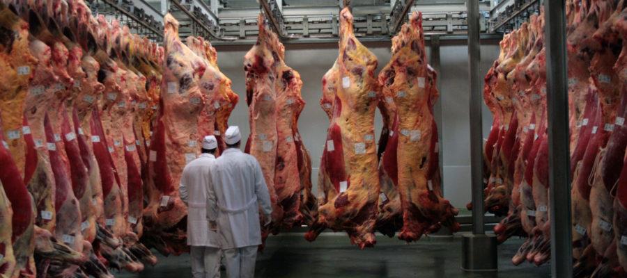 Carne De Vaca Gallega