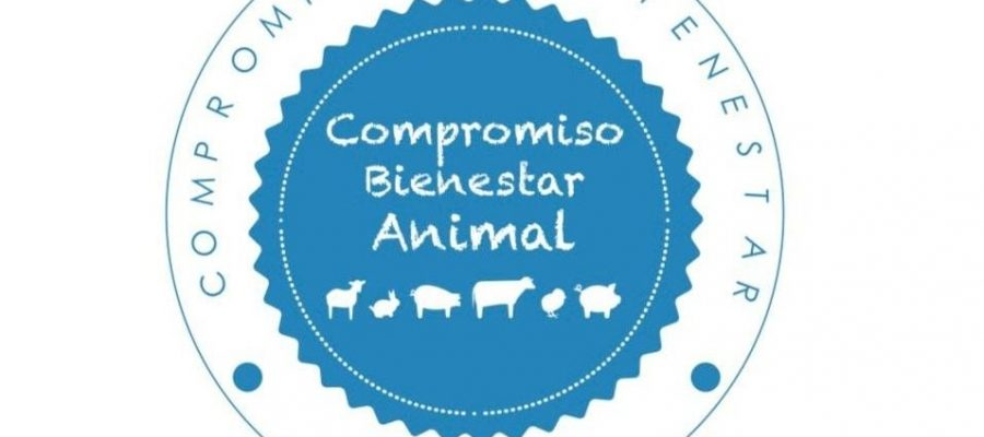 España: Uno De Los Grandes Referentes En Bienestar Animal